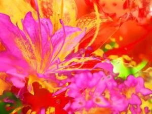 Blumen 22